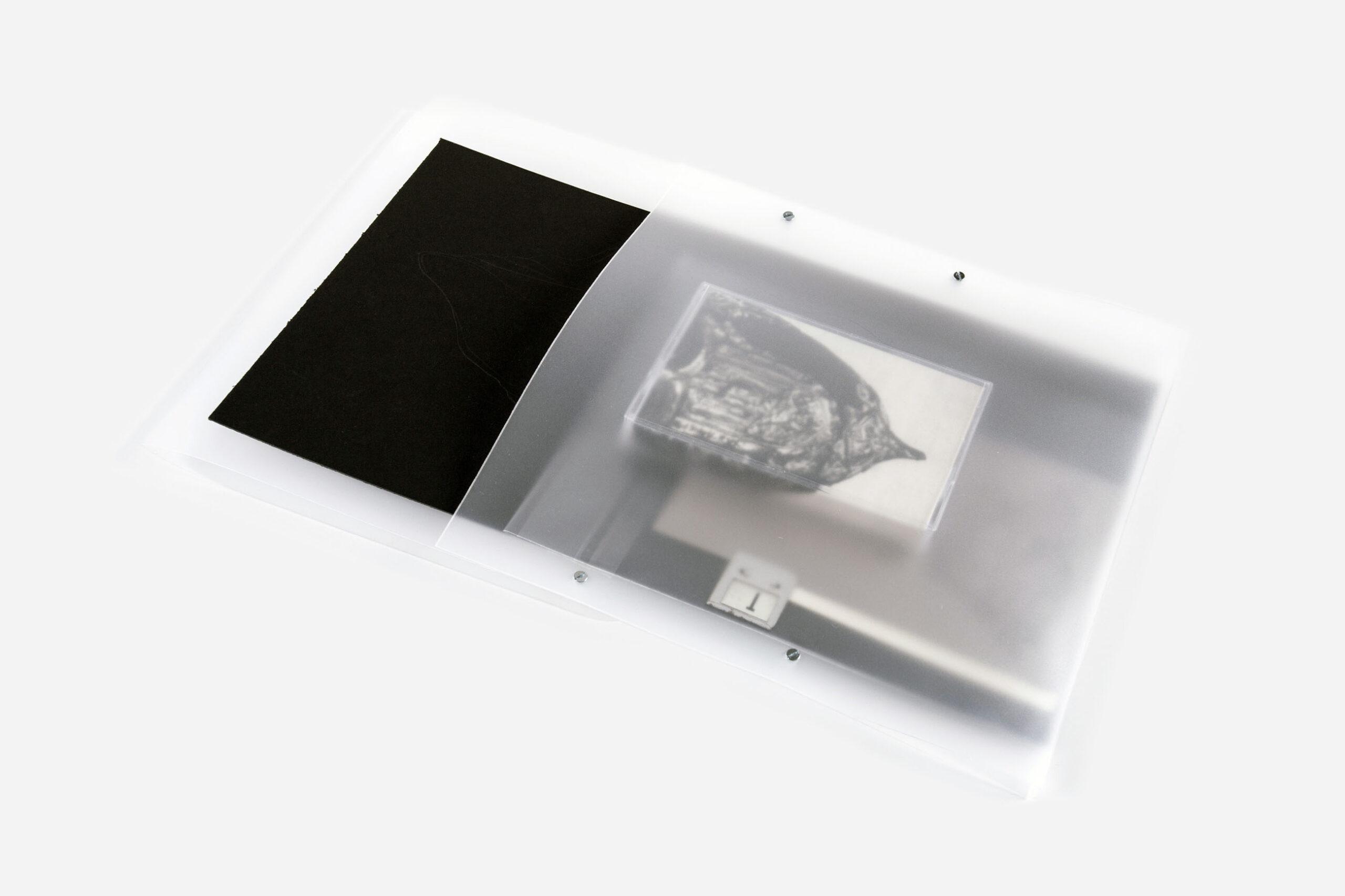 Jacek Doroszenko - Useful Remnants, album detail 9
